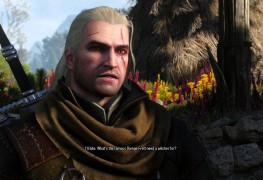 The Witcher 3 Wild Hunt Gameplay-Videos