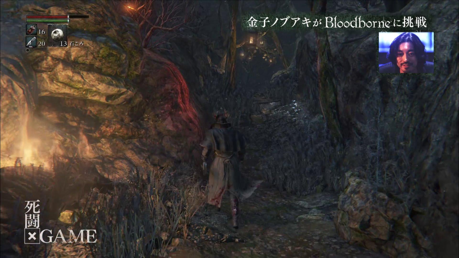 Bloodborne: Gameplay-Trailer zeigt The Forbidden Woods