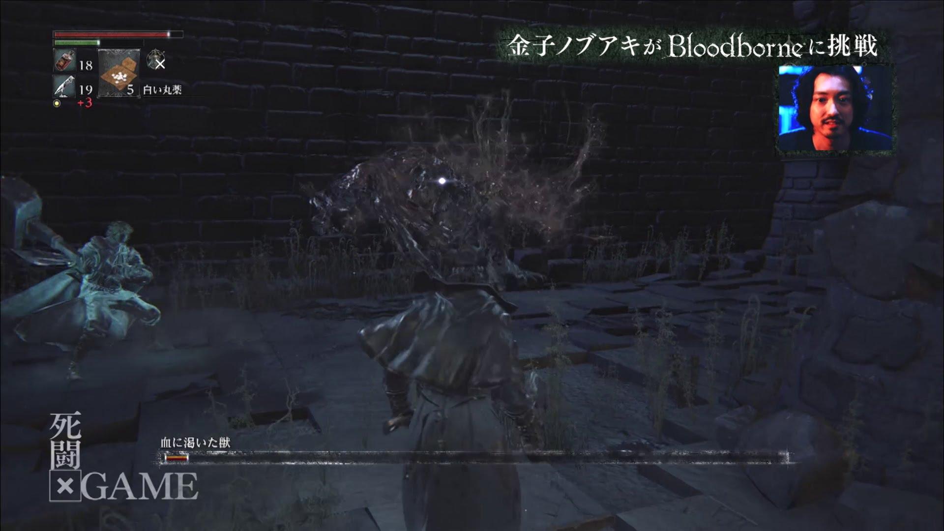 Bloodborne: Patch gegen lange Ladezeiten angekündigt